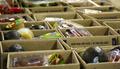Διανομή τροφίμων στο Δήμο Ανατολικής Μάνης